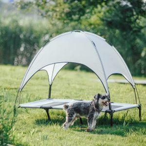 best outdoor dog beds