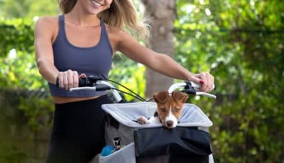 best dog carriers for bikes