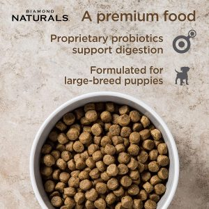 best large breed puppy foods