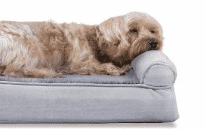 best cooling dog bed