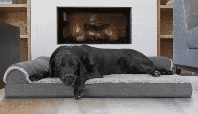best cooling dog bed