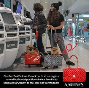 best-airline-approved-pet-carriers
