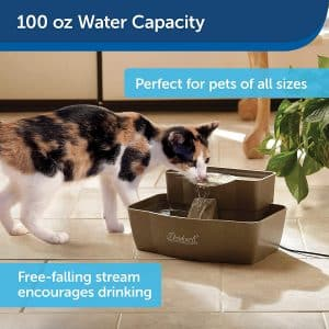 battery operated cat water fountain