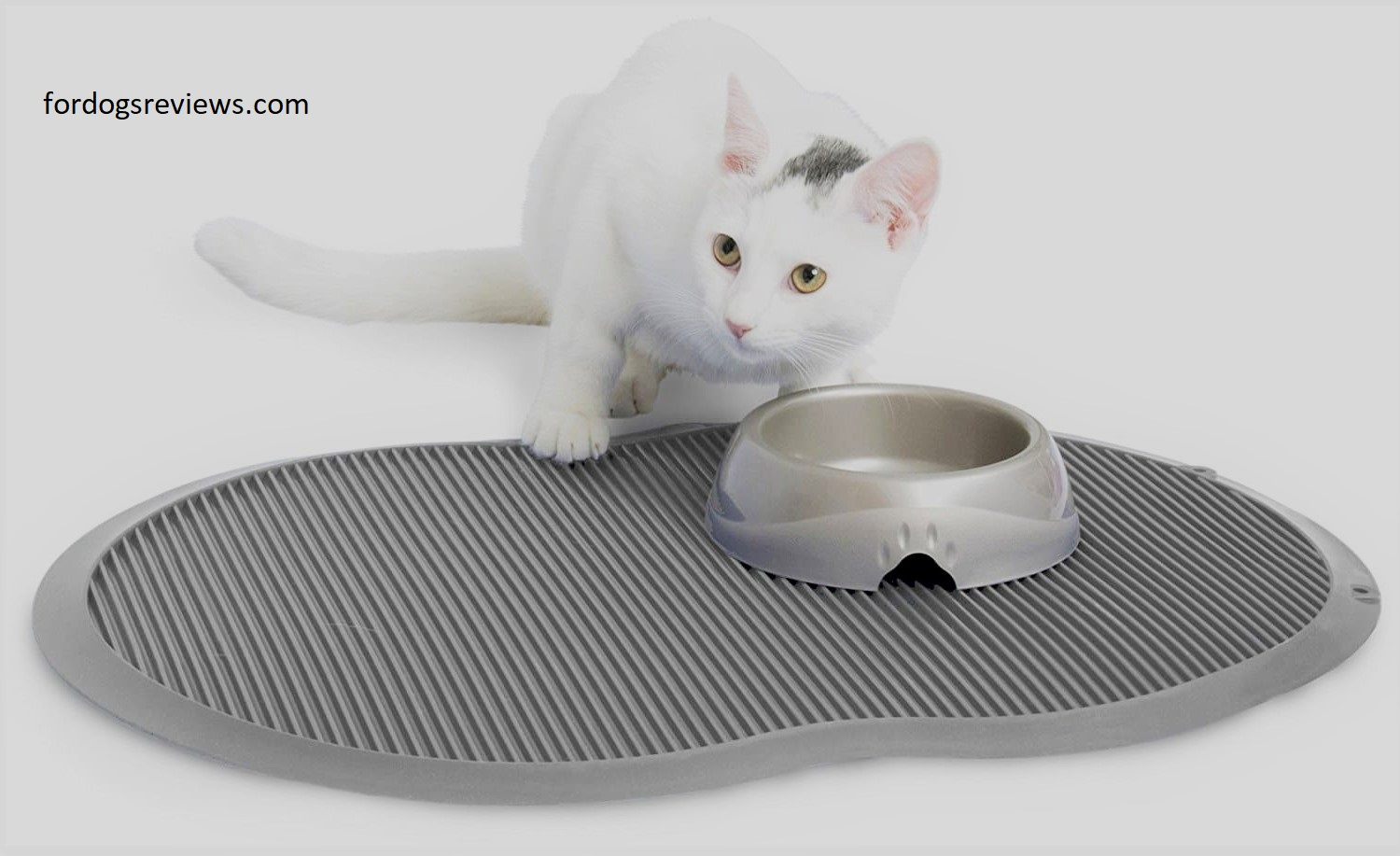 Best cat food mats
