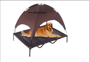 the advantages of a dog tent