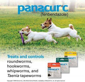 best dog dewormers