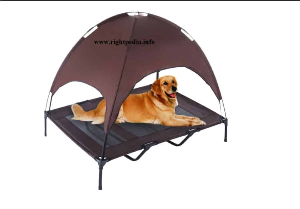 the-advantages-of-a-dog-tent
